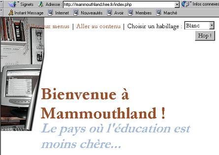 capture d'écran de ma page avec NS4