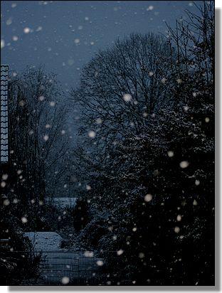 Chute de neige à la Sainte Catherine